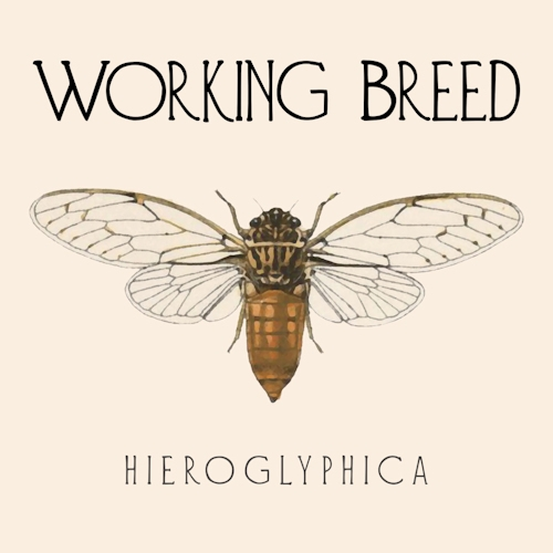 Working Breed